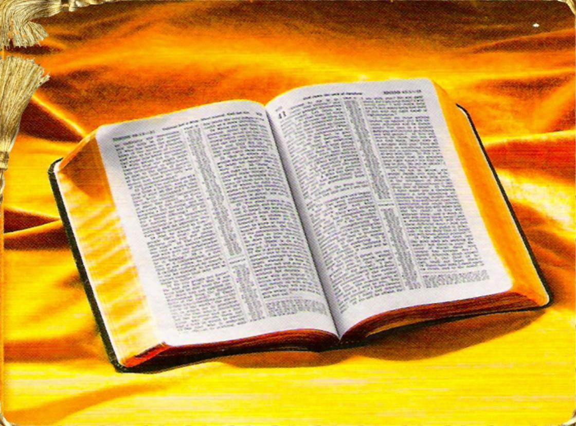 Núm. 22, 29 de Agosto, 2011 – El Evangelista Mexicano