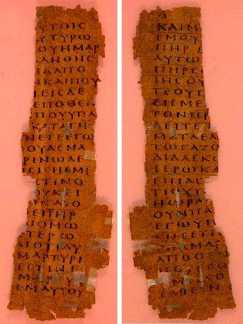 not int.papiro
