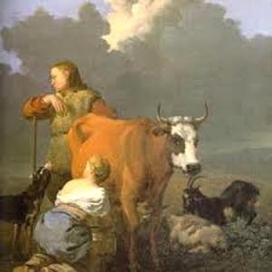 sab.412.vaca