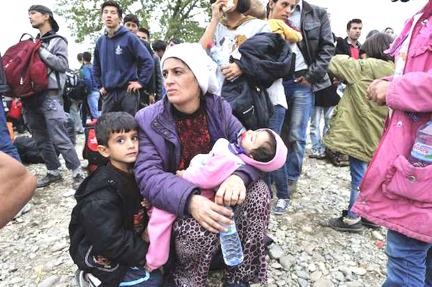 not int.refugiados