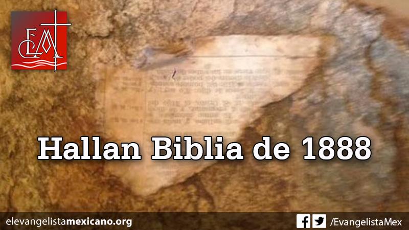 hallan-biblia