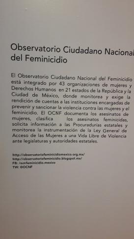 Feminicidio 9
