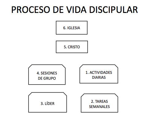 proceso de vida discipular