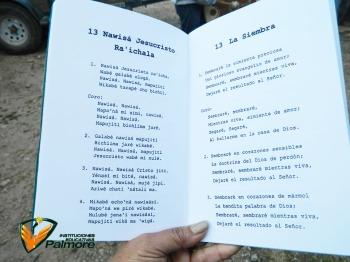 Org. Rector - Colegio Palmore 6