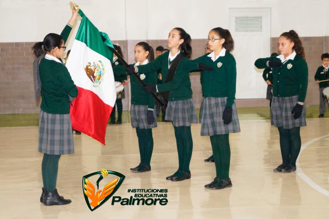 8. Org. Rector - Colegio Palmore 1.jpg