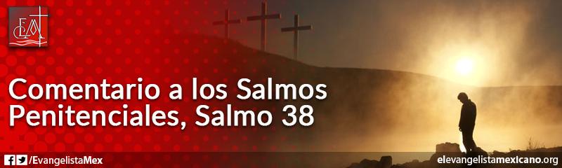 13. Comentario a los Salmos Penitenciales, Salmo 38