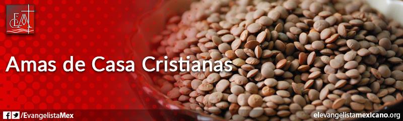 17. Amas de casa cristianas