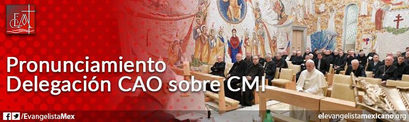 4. Pronunciamiento delegacion de la CAO, sobre el CMI