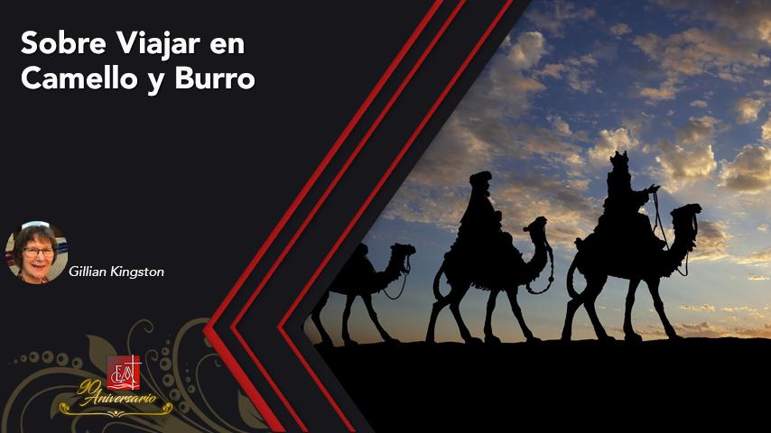 Sobre Viajar en Camello yBurro*